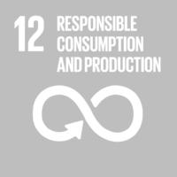 E_SDG-goals_icons-individual-rgb-12-1024x1024